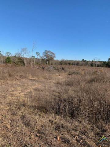 18245 Cr 361 (62 Acres), Winona, TX 75792 (MLS #10129934) :: Griffin Real Estate Group