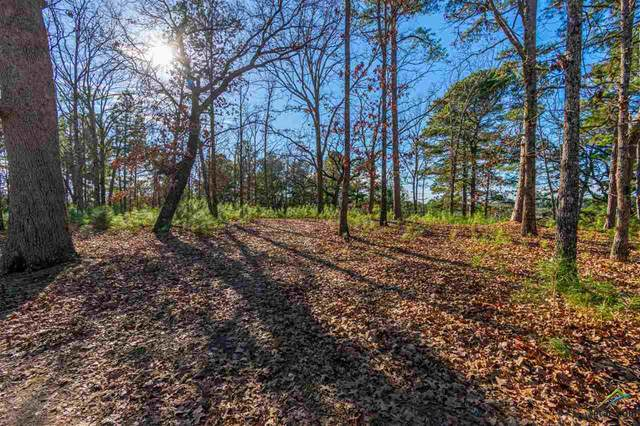 TBD Easy St, Flint, TX 75762 (MLS #10129946) :: Griffin Real Estate Group