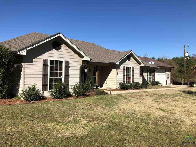 2315 An County Road 2133, Palestine, TX 75801 (MLS #10129999) :: The Wampler Wolf Team