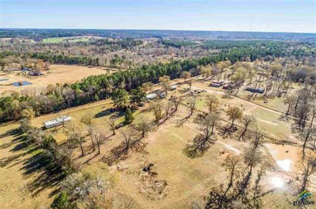 7741 Cr 130D, Overton, TX 75684 (MLS #10130021) :: Griffin Real Estate Group