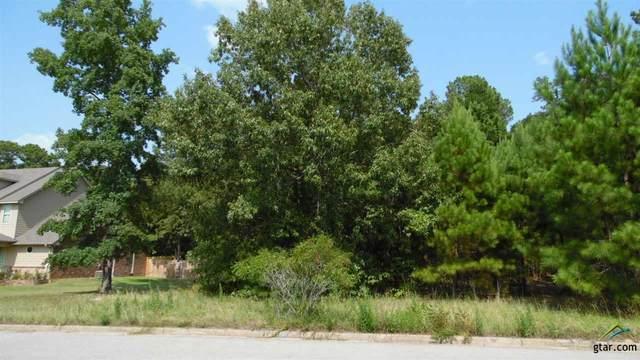10913 Deer Creek Dr, Tyler, TX 75707 (MLS #10130029) :: RE/MAX Professionals - The Burks Team