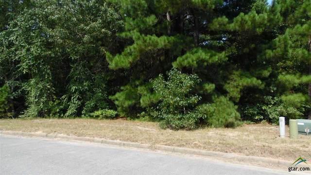 10857 Deer Creek Dr., Tyler, TX 75707 (MLS #10130030) :: Griffin Real Estate Group