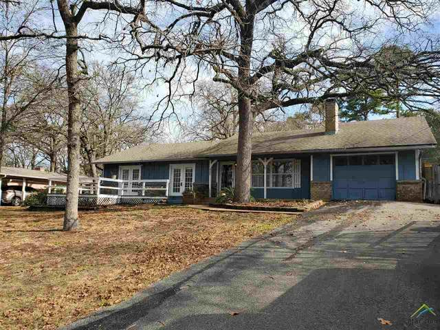 337 Lonestar, Hideaway, TX 75771 (MLS #10130040) :: Griffin Real Estate Group