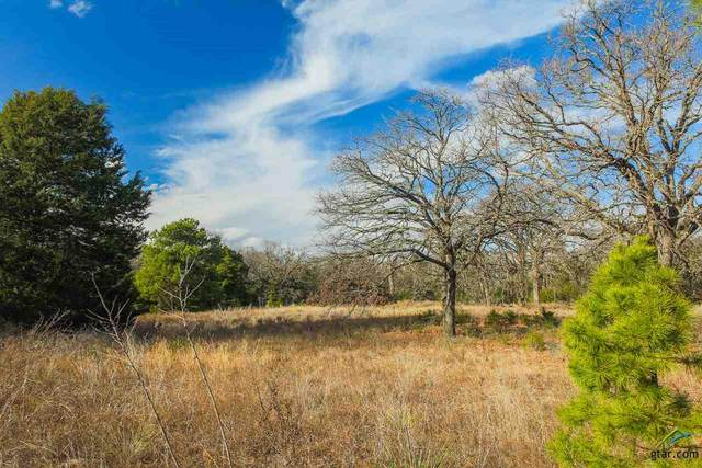 17531 Cr 4108, Lindale, TX 75771 (MLS #10130073) :: Griffin Real Estate Group
