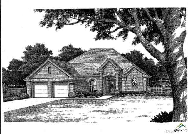 111 Pr 6337, Mineola, TX 75773 (MLS #10130164) :: Griffin Real Estate Group
