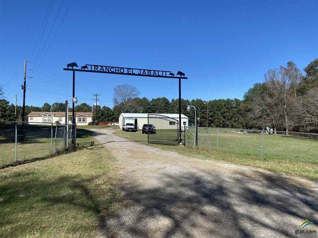17165 Fm 1252, Winona, TX 75792 (MLS #10130194) :: Griffin Real Estate Group