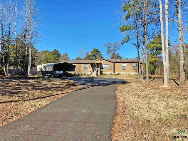 9141 Cr 3410, Brownsboro, TX 75756 (MLS #10130197) :: Griffin Real Estate Group