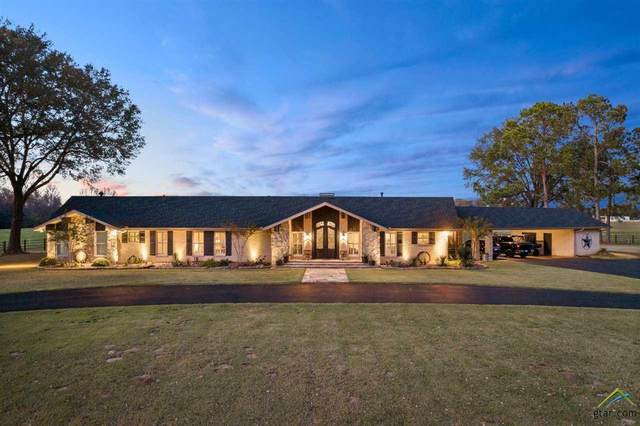2125 W Hwy 11, Pittsburg, TX 75686 (MLS #10130203) :: Griffin Real Estate Group