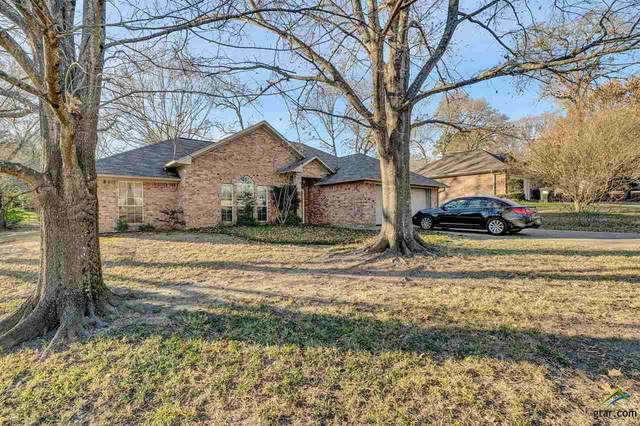 11897 Bird Point Trail, Tyler, TX 75703 (MLS #10130217) :: Griffin Real Estate Group