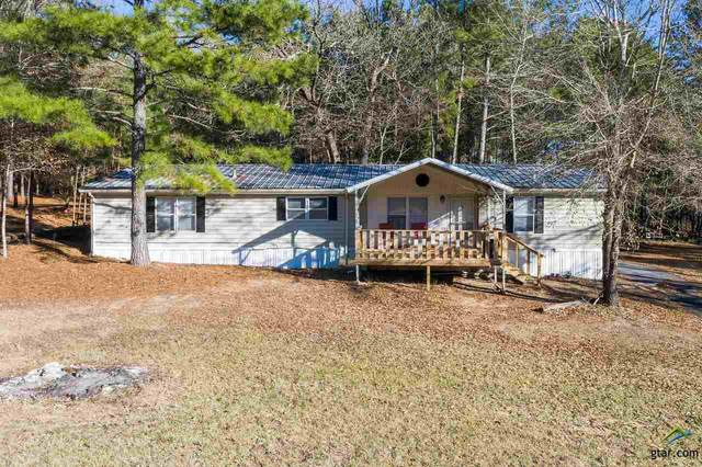 183 An County Road 4423, Palestine, TX 75803 (MLS #10130231) :: The Wampler Wolf Team