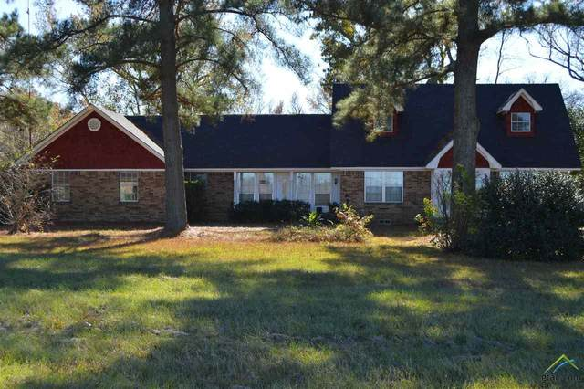 2000 Fm 2088, Quitman, TX 75783 (MLS #10130293) :: The Wampler Wolf Team