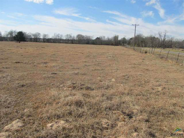 TBD Fm 1519, Pittsburg, TX 75686 (MLS #10130400) :: The Edwards Team Realtors