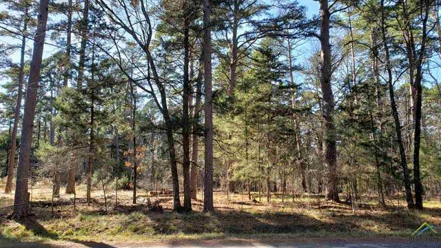 Lot 47 Acr 319, Frankston, TX 75763 (MLS #10130413) :: The Wampler Wolf Team