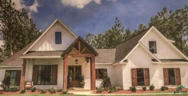 3005 Willow Creek Cir, Tyler, TX 75703 (MLS #10130416) :: Griffin Real Estate Group