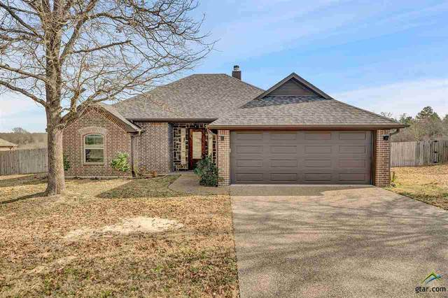12837 Cr 1139, Tyler, TX 75709 (MLS #10130477) :: Griffin Real Estate Group
