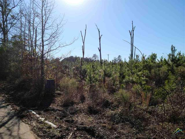 TBD Locust, Gilmer, TX 75645 (MLS #10130483) :: Griffin Real Estate Group