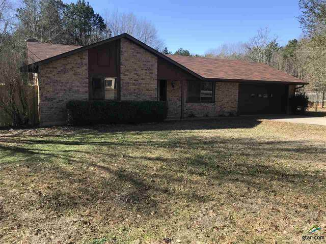 12324 Chapman Road, Tyler, TX 75708 (MLS #10130515) :: Griffin Real Estate Group