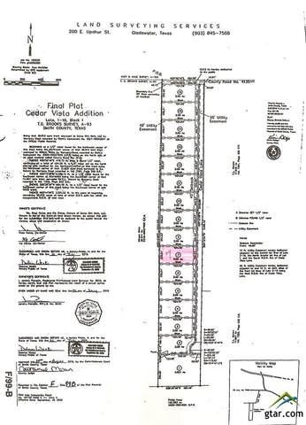 13943 Cedar Vista Ln (Lindale ISD), Tyler, TX 75704 (MLS #10130575) :: The Edwards Team Realtors