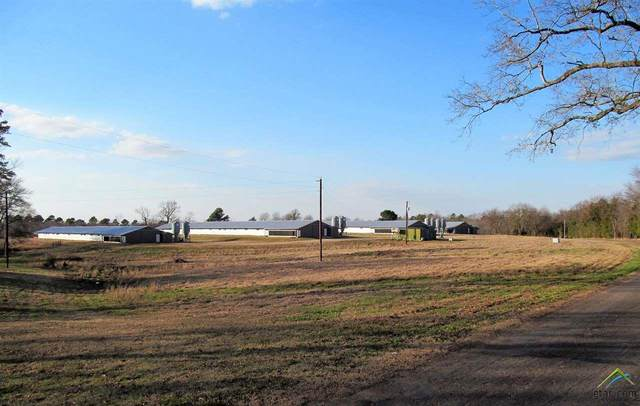 768 Cr 4480, Winnsboro, TX 75494 (MLS #10130613) :: Griffin Real Estate Group