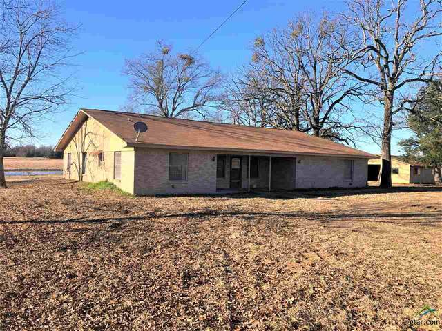 451 Fm 1699, Avery, TX 75554 (MLS #10130625) :: Griffin Real Estate Group