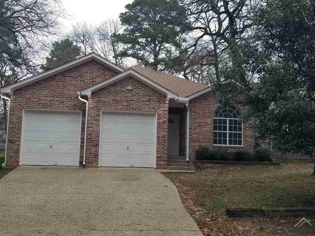 17214 Mary Martin Dr, Flint, TX 75762 (MLS #10130674) :: Griffin Real Estate Group