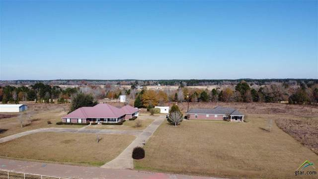 2895 E Cr 118, Overton, TX 75684 (MLS #10130710) :: The Edwards Team Realtors