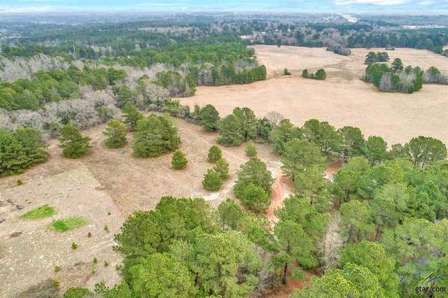 18754 County Road 437, Lindale, TX 75771 (MLS #10130711) :: The Edwards Team Realtors