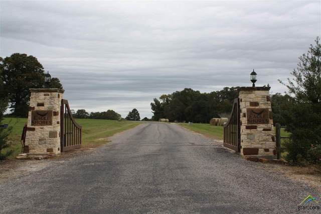 Lot 57 Pr 52320, Pittsburg, TX 75686 (MLS #10130722) :: Griffin Real Estate Group