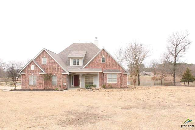 308 Cr 2910, Pittsburg, TX 75686 (MLS #10130725) :: Griffin Real Estate Group