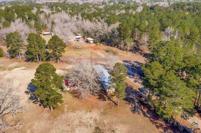 3489 County Road 100 N, Overton, TX 75684 (MLS #10130734) :: Griffin Real Estate Group