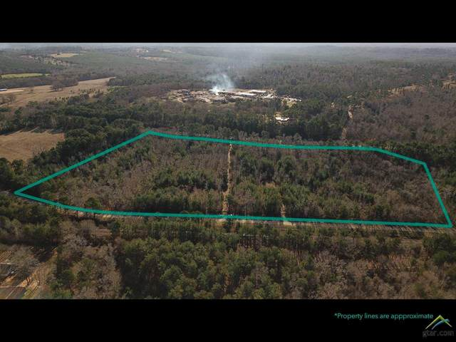 000 Cr 3210, Jacksonville, TX 75766 (MLS #10130895) :: Griffin Real Estate Group