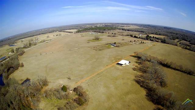 13946 Cr 1120, Athens, TX 75751 (MLS #10131247) :: Griffin Real Estate Group
