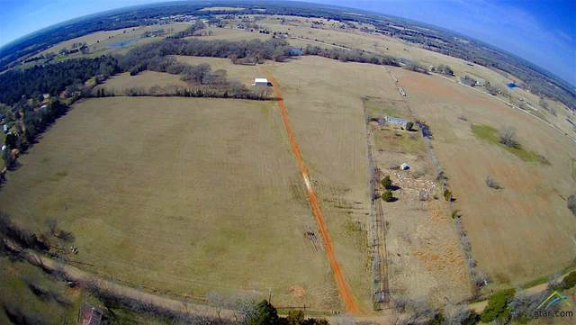 13950 Cr 1120, Athens, TX 75751 (MLS #10131333) :: Griffin Real Estate Group