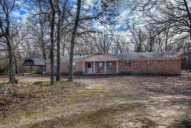 1730 County Road 2310, Sulphur Springs, TX 75482 (MLS #10131422) :: The Edwards Team Realtors