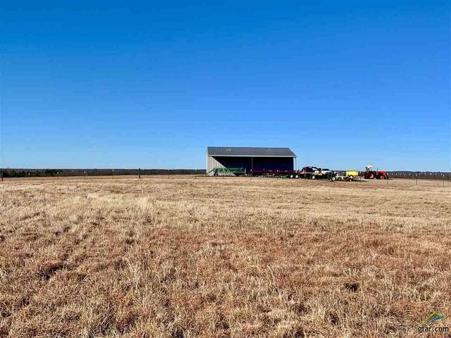 195ac County Road 3201, Campbell, TX 75422 (MLS #10131475) :: The Edwards Team Realtors