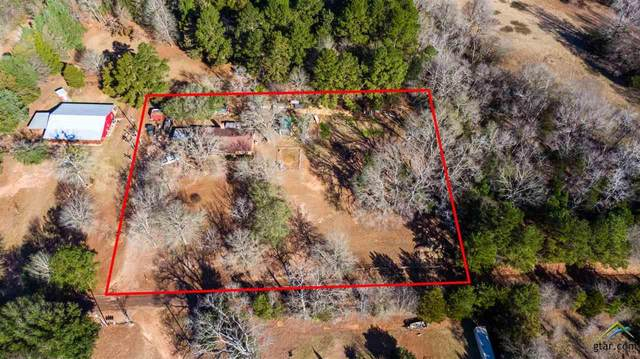 877 E County Road 118, Overton, TX 75684 (MLS #10131513) :: The Edwards Team Realtors