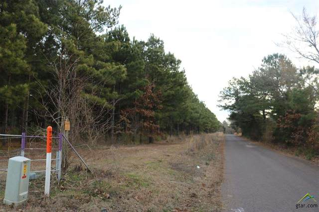 TBD Bluebell Road Tract 4, Gilmer, TX 75644 (MLS #10131561) :: The Wampler Wolf Team