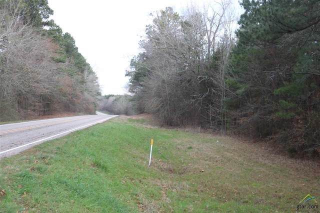 TBD Fm 2263 Tract 2, Gilmer, TX 75644 (MLS #10131564) :: The Wampler Wolf Team