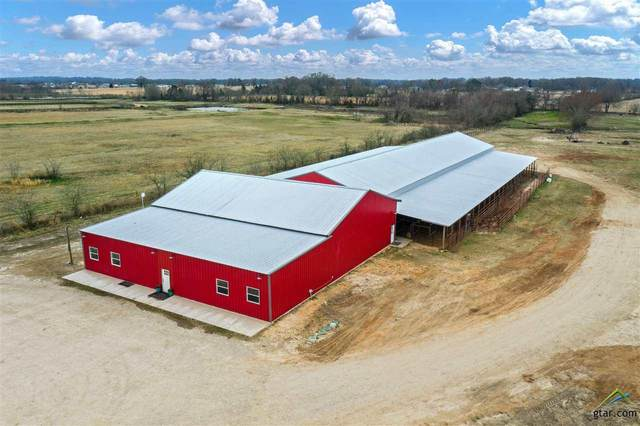 19821 State Highway 64, Canton, TX 75103 (MLS #10131571) :: RE/MAX Professionals - The Burks Team