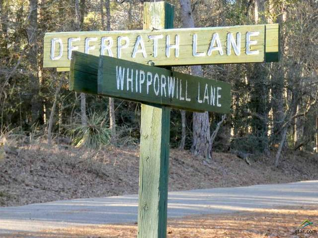 Lot 176 Deer Path Lane, Holly Lake Ranch, TX 75765 (MLS #10131614) :: The Wampler Wolf Team