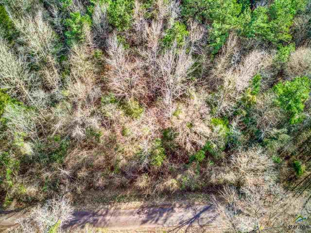 385 County Road 4603, Troup, TX 75789 (MLS #10131689) :: RE/MAX Professionals - The Burks Team