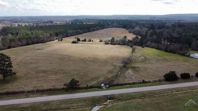 64 +/- Acres Fm 1662, Laneville, TX 75667 (MLS #10131695) :: Griffin Real Estate Group