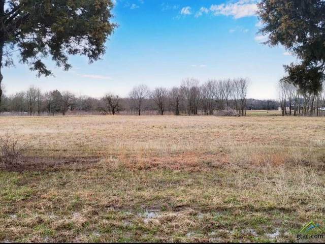 TBD Vz County Road 3804, Wills Point, TX 75169 (MLS #10131756) :: RE/MAX Professionals - The Burks Team