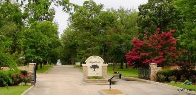 Lot 60 Pr 5943, Yantis, TX 75497 (MLS #10131778) :: Griffin Real Estate Group