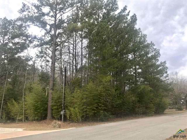 Lot 13 & 14 S Lakeview Drive, Troup, TX 75789 (MLS #10131782) :: Griffin Real Estate Group