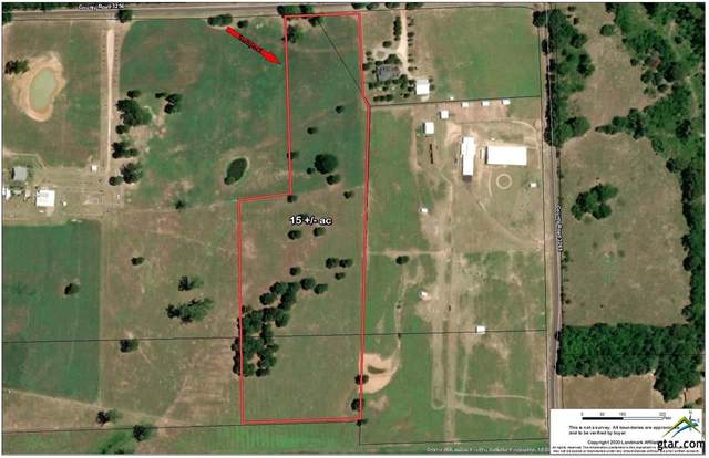 922 County Road 3256, Quitman, TX 75783 (MLS #10131789) :: The Wampler Wolf Team