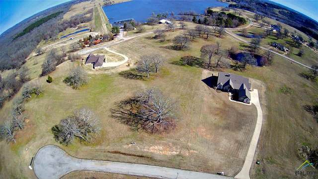 6320 Overlook Point, Athens, TX 75752 (MLS #10131817) :: The Edwards Team Realtors