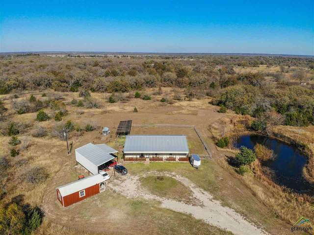 14007 NE County Road 3170, Kerens, TX 75144 (MLS #10131842) :: RE/MAX Professionals - The Burks Team