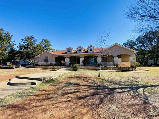 13031 Cr 468, Tyler, TX 75704 (MLS #10131860) :: The Edwards Team Realtors