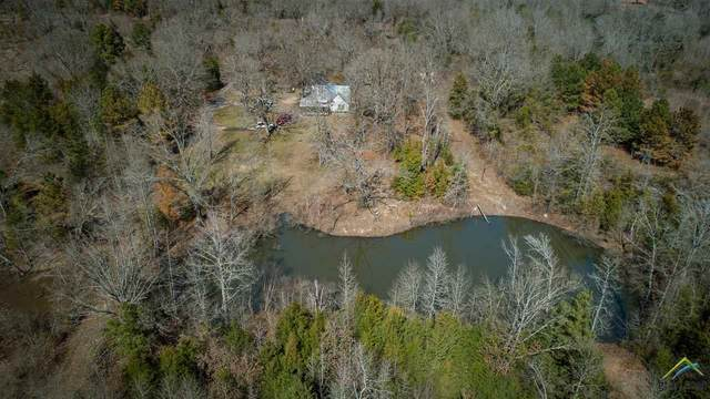 213 County Road 1460, Quitman, TX 75783 (MLS #10131949) :: The Wampler Wolf Team